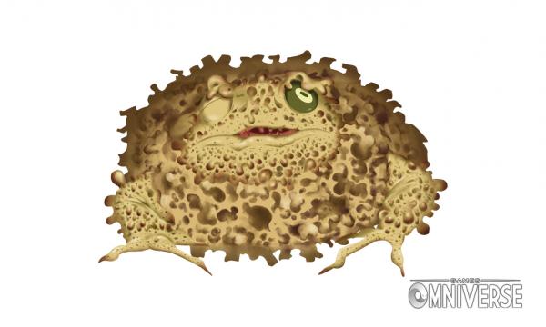 Sponge Toad